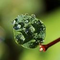 Wassertröpfchen